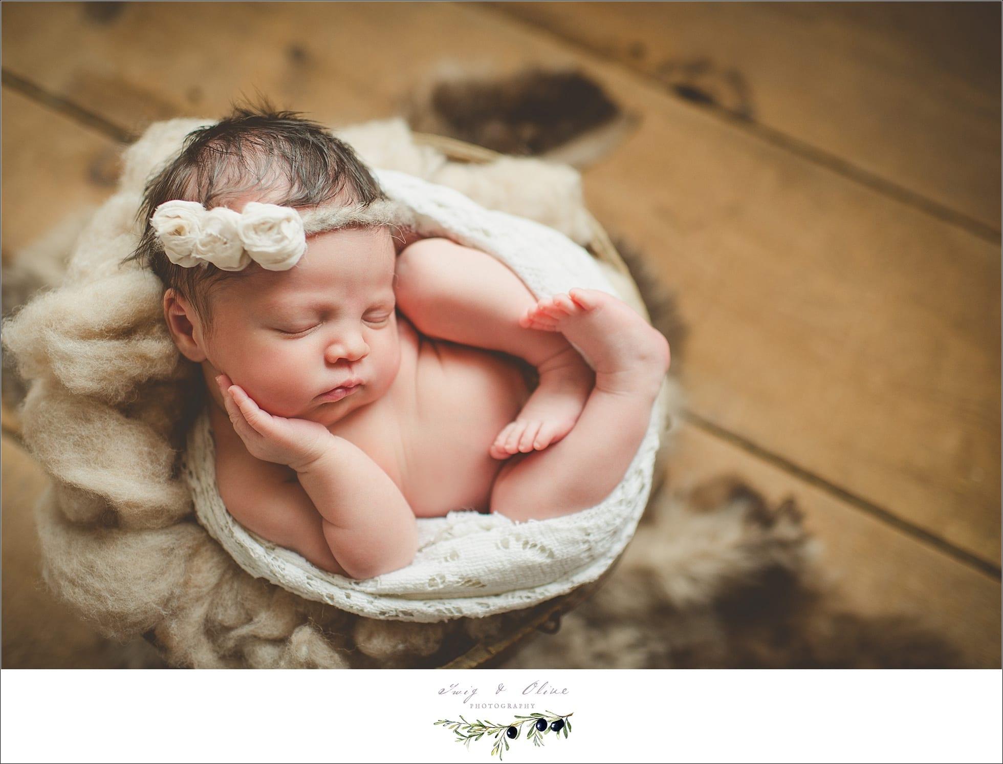 Madison Wisconson Newborn Photographer
