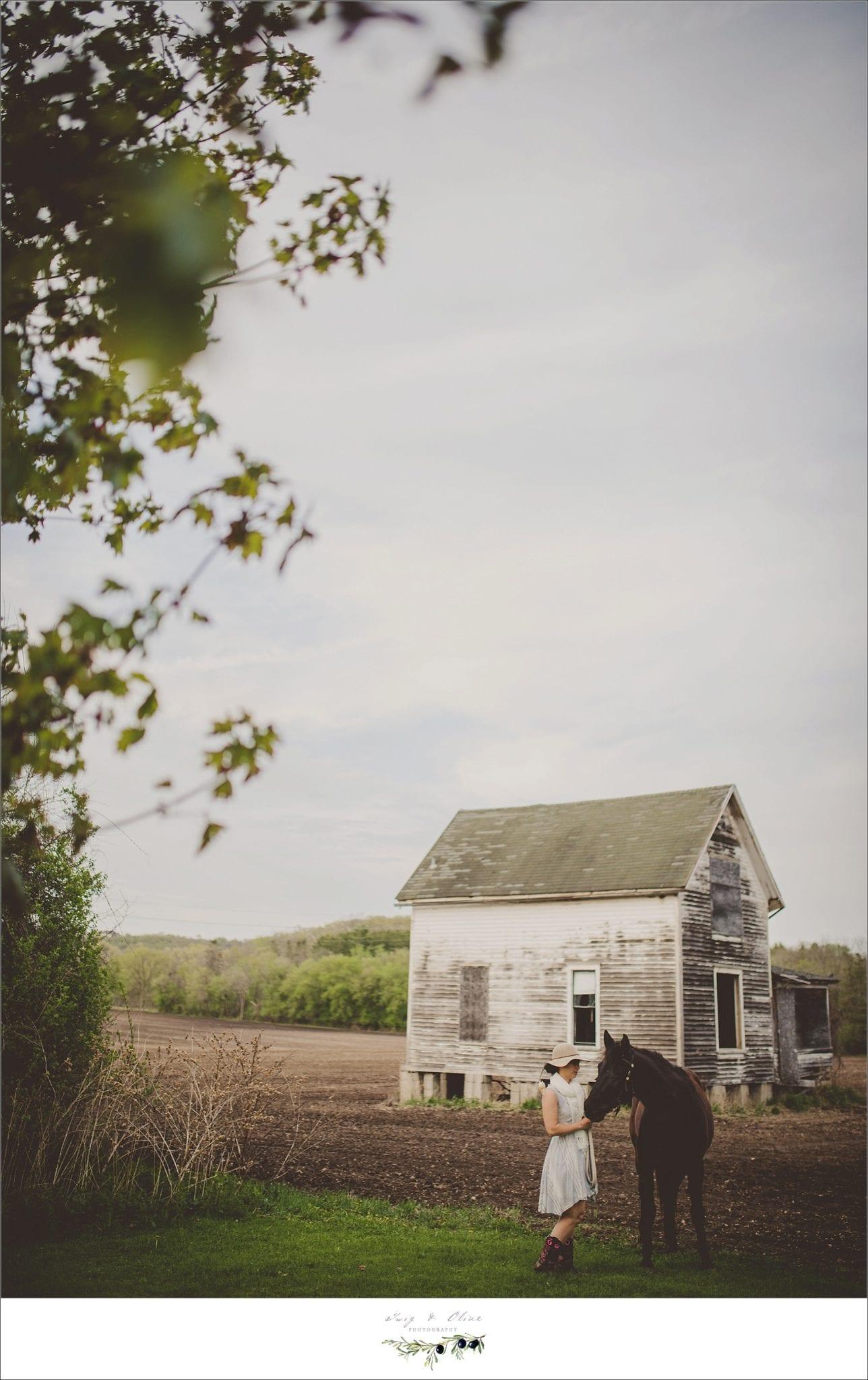 barns, horses, portrait sessions Minnesota