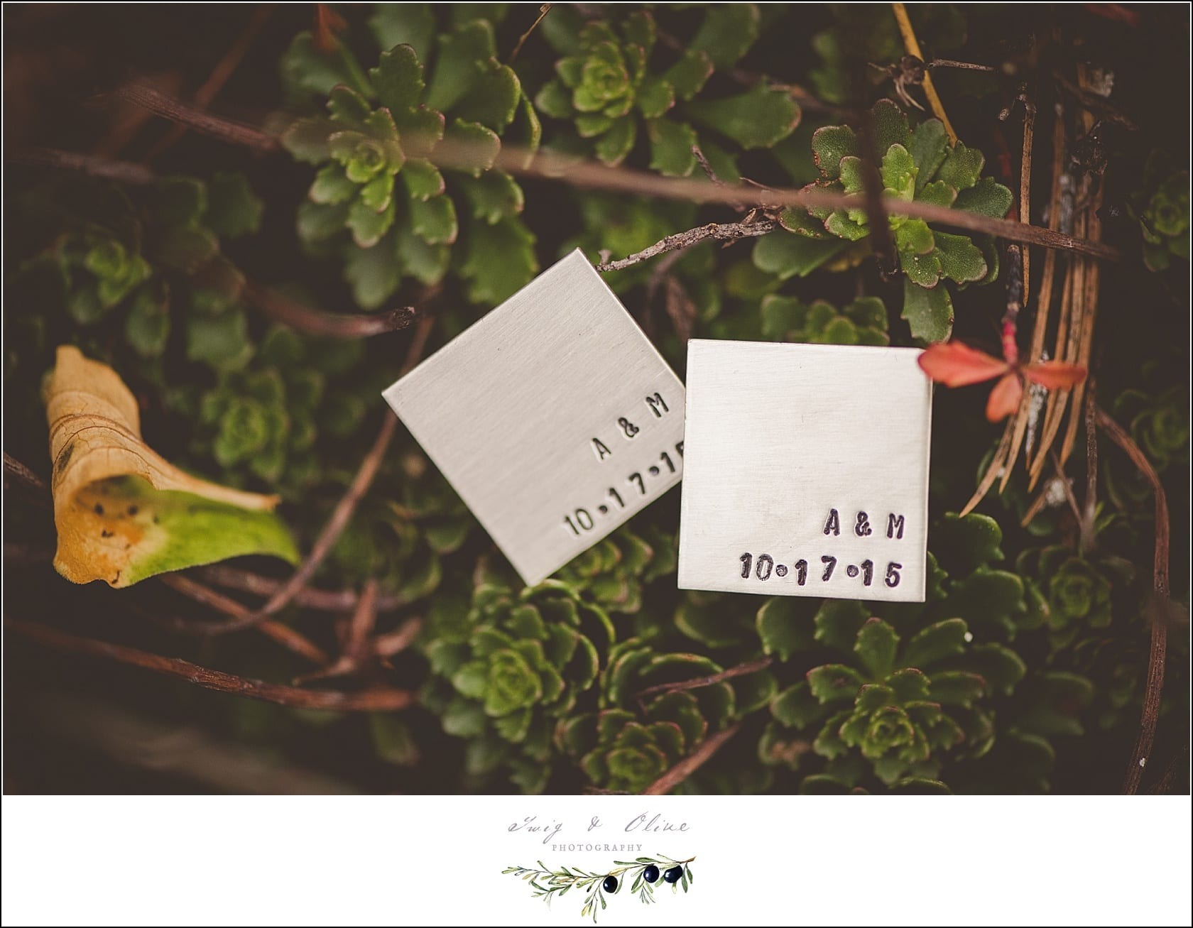Twig & Olive PhotographyWeddings Archives < Page 46 of 59 < Twig ...