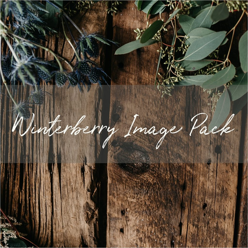 Stock Image Pack | Winterberry Floral (8 images)