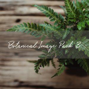 Stock Image Pack | Botanical Pack 3 (10 images)