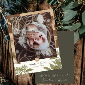 Newborn Portrait Pricing Guide Template | Rustic Botanical