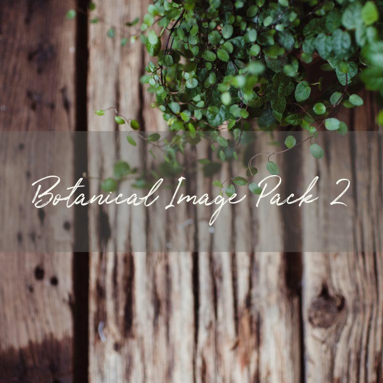 Stock Image Pack | Botanical Pack 2 (10 images)