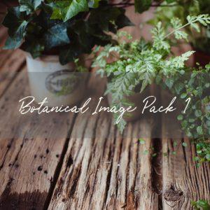 Stock Image Pack | Botanical Pack 1 (10 images)