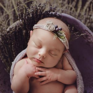 Portrait e-Workshop Bundle (Children and Families and Newborn)